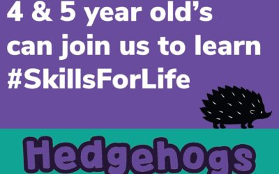Something big is coming……We are proud to announce the arrival of Hedgehogs!