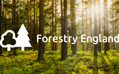 Forestry England resources
